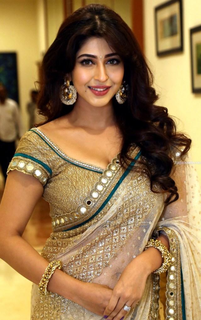 Sonarika Bhadoria hindi tv actress Event CTS3 8 hot saree pics