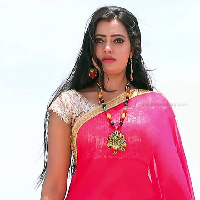 Sowmya rao Tamil tv actress Nenjam MS1 12 hot saree photo