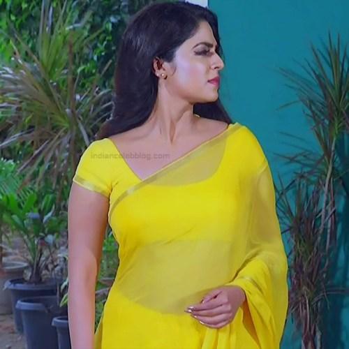 Malavika wales tamil tv actress Nandini S1 13 hot saree photo