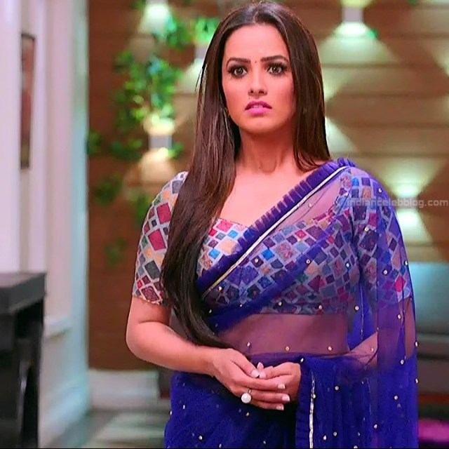Anita hassanandani hindi tv actress Naagin S1 10 hot saree photo