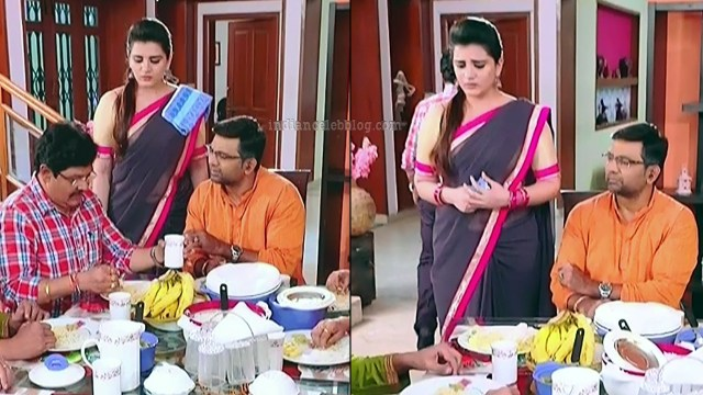 Aishwarya gowda telugu tv actress Akka MS1 10 sari pics