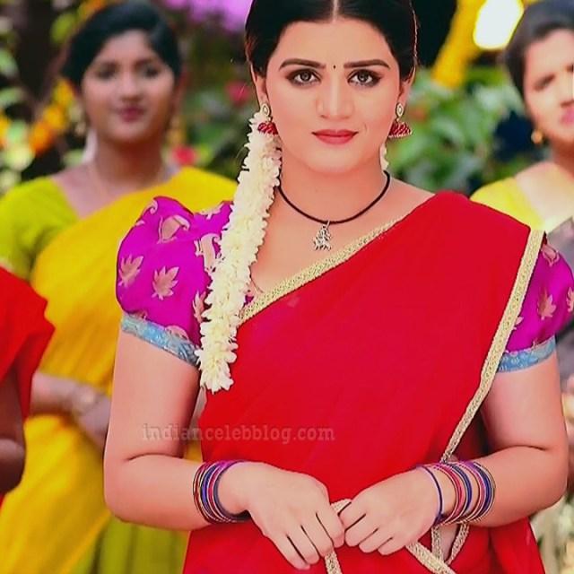 Aishwarya gowda telugu tv actress Akka MS1 4 saree photo