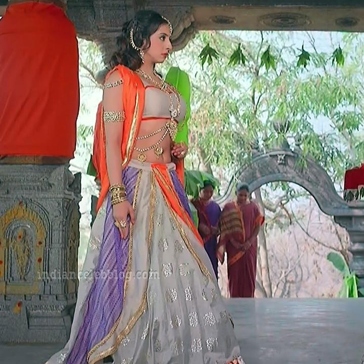 Sanjana galrani telugu tv swarna KS1 3 hot photo