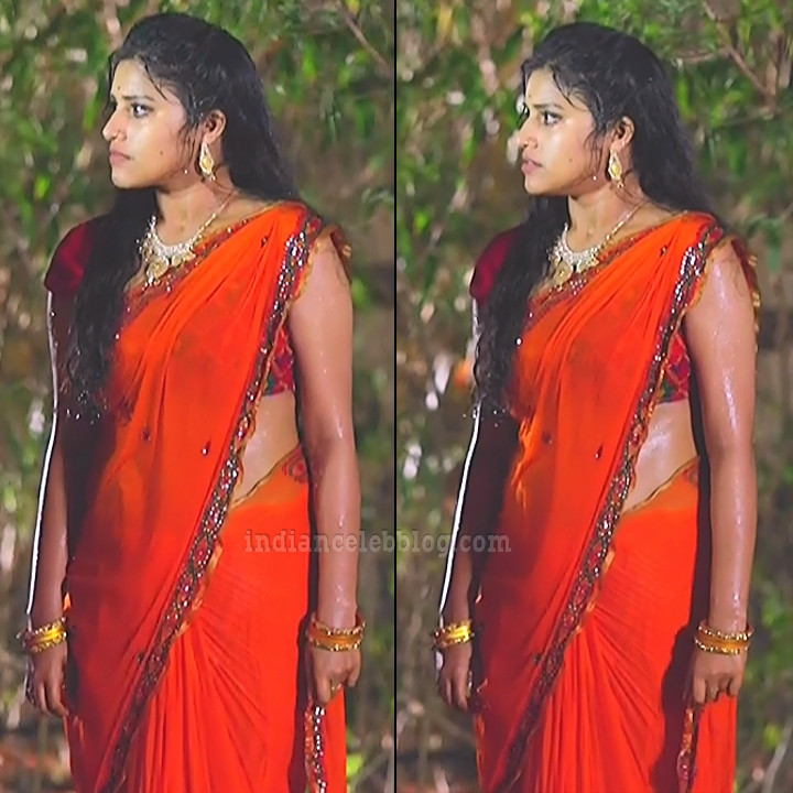 Shreya anchan tamil tv actress nandhini S1 10 hot sari pics
