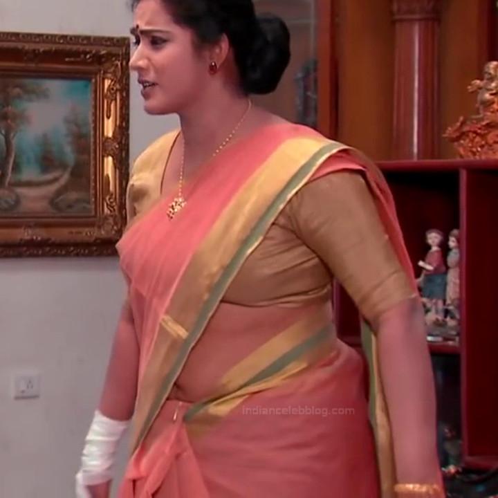 Sravani telugu tv actress Akka MS1 12 hot sari photo