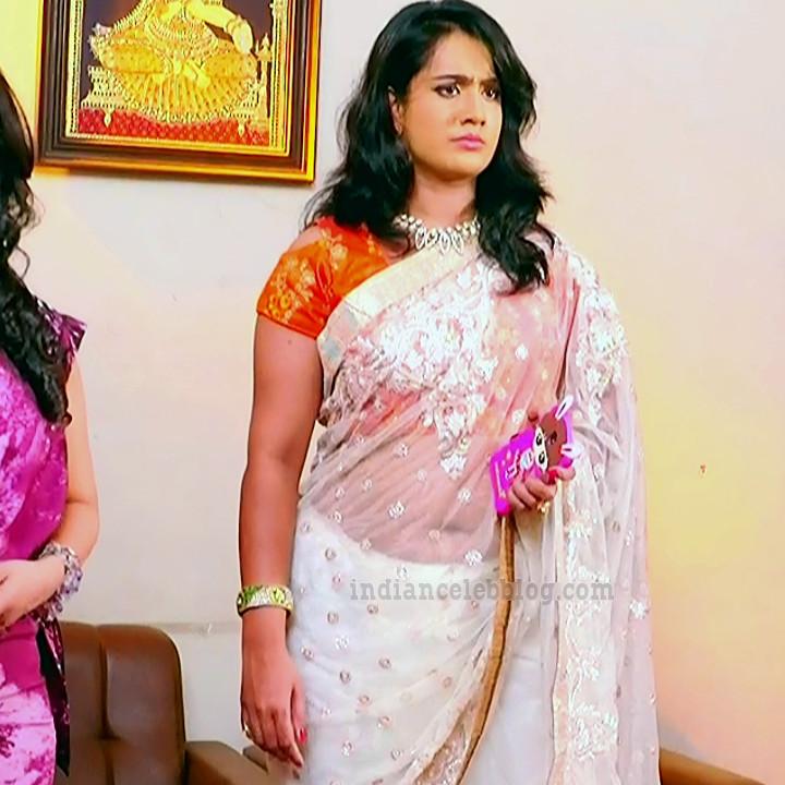 Sravani telugu tv actress Akka MS1 8 hot sari navel photo
