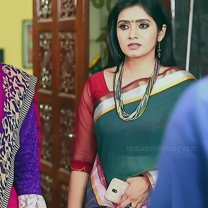 Srithika tamil TV actress KVS1 3 hot saree photo
