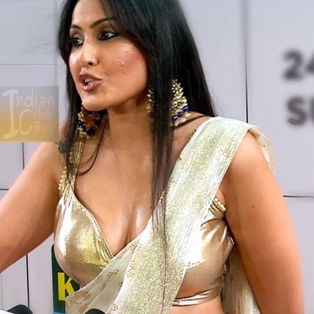 Kamya-punjabi-in-sari-kesh-king-gold-awards-2018_5