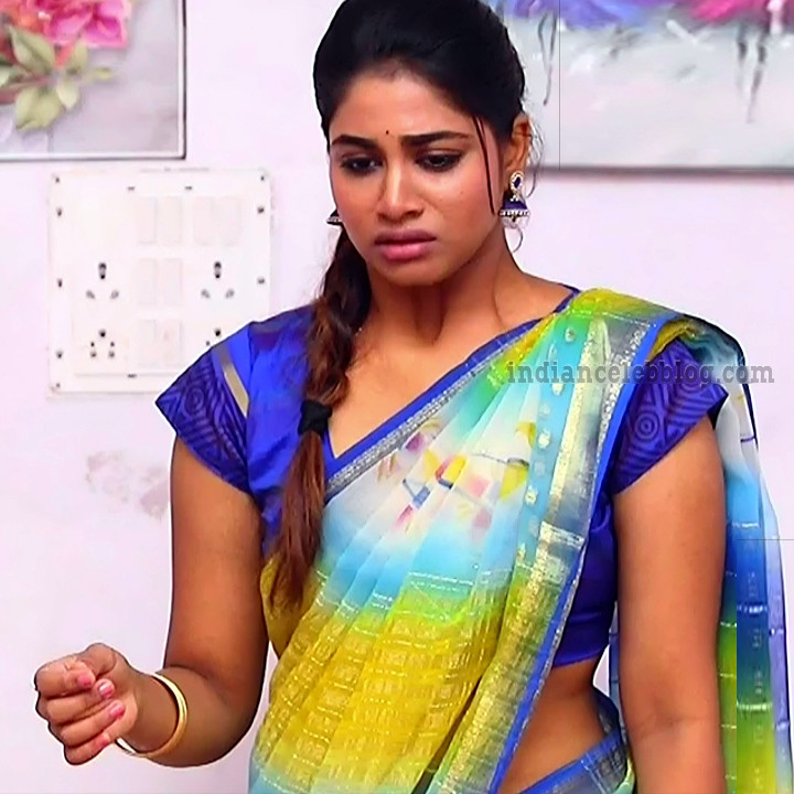 Shivani pagal nilavu S1 9 tamil tv serial actress sari photo