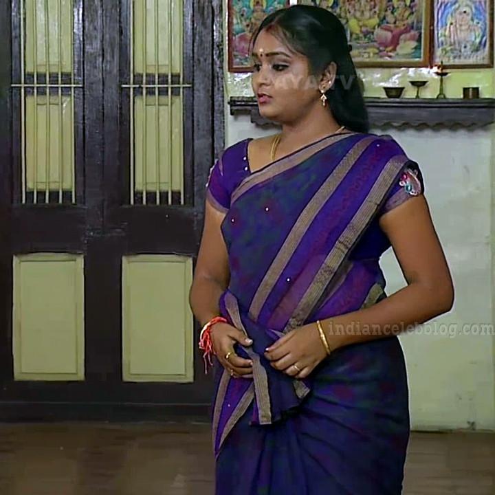 Tamil TV serial actress MscCmplS1 10 saree photo