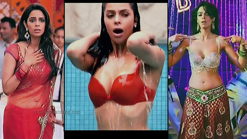Mallika sherawat Double dhamaal Hindi movie hot Caps