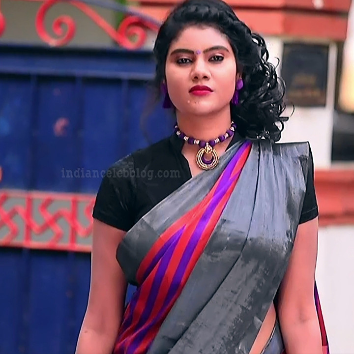 Nivisha tamil tv actress eeramana rojave s1 11 sari photo