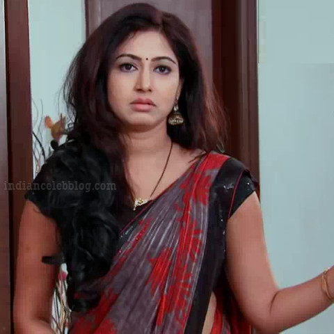 Revathi telugu tv serial actress S1 6 saree photo