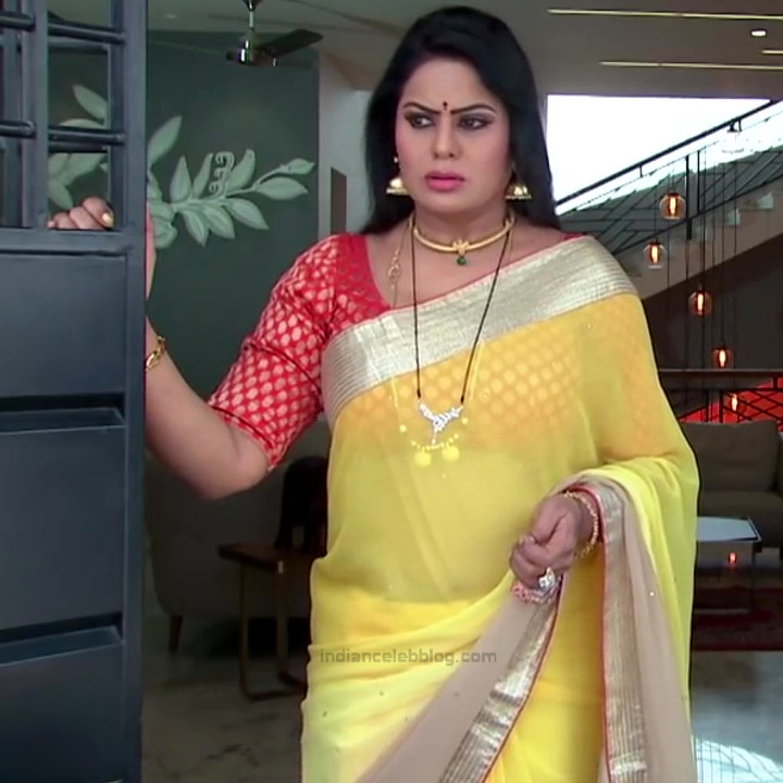 Tina naidy telugu serial actress swathi chinukulu s1 4 saree pics