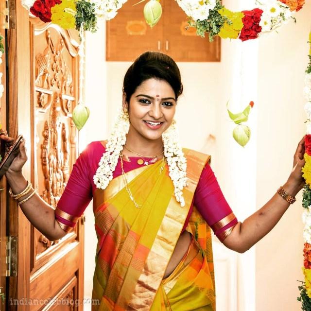 Chithra VJ tamil tv celeb CTS1 13 hot saree photo