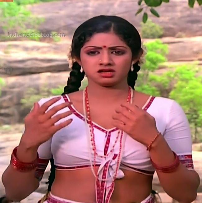 Sridevi ranuva veeran tamil movie still s1 6 hot photo