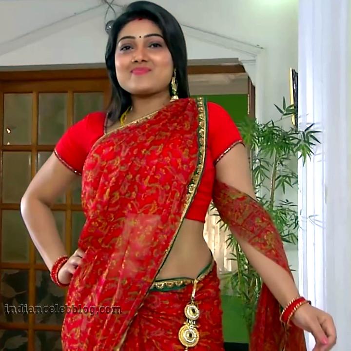 Priyanka nalkari roja serial actress S2 1 saree pic