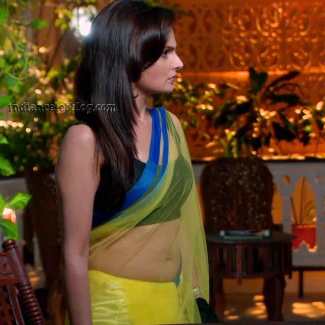Monica Bedi Hindi TV actress YTDS2 4 hot saree photo