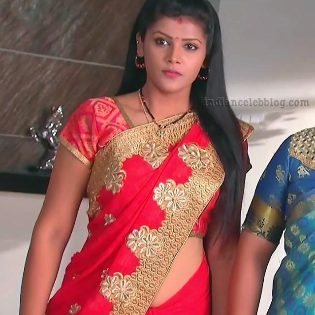 Sangeetha Kamath Telugu TV actress CTS1 1 hot saree photo
