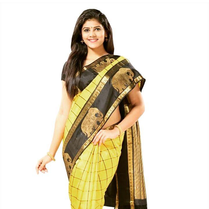 Sangeetha Kamath Telugu TV actress CTS1 3 hot saree photo
