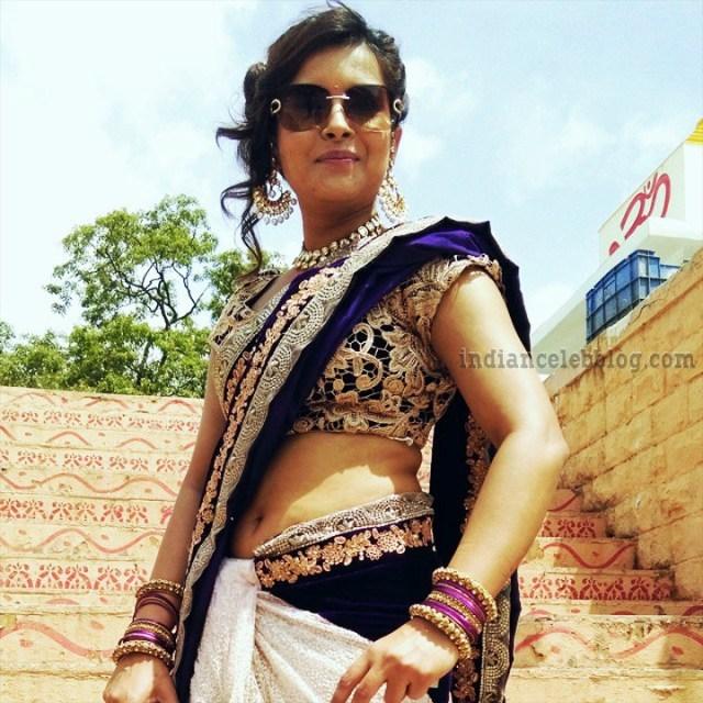 Shilpa Raizada Hindi TV actress CTS1 2 hot saree photo