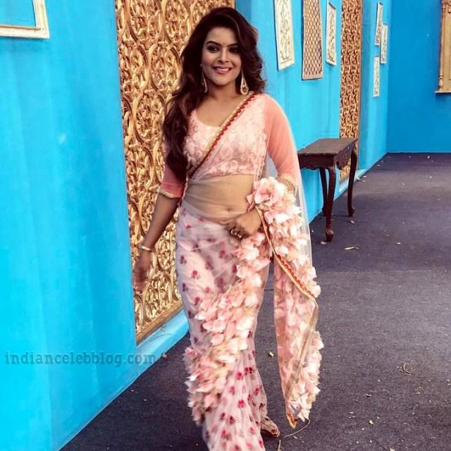 Shilpa Raizada Hindi TV actress CTS1 5 hot saree photo