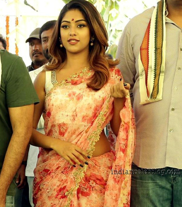 Anu Emmanuel Telugu film event S1 9 hot saree photo