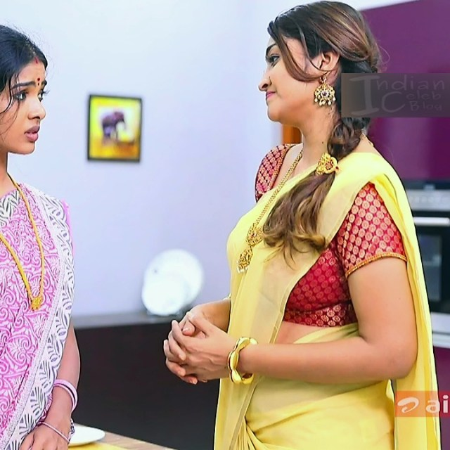 Neelima rani tamil tv actress Aranmanai KS1 6 saree photo