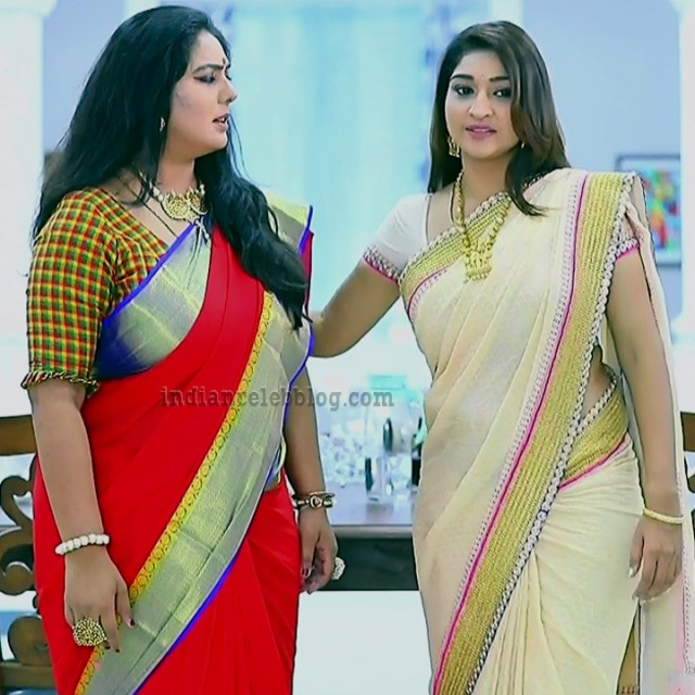 Neelima rani tamil tv actress Aranmanai KS1 7 saree pics