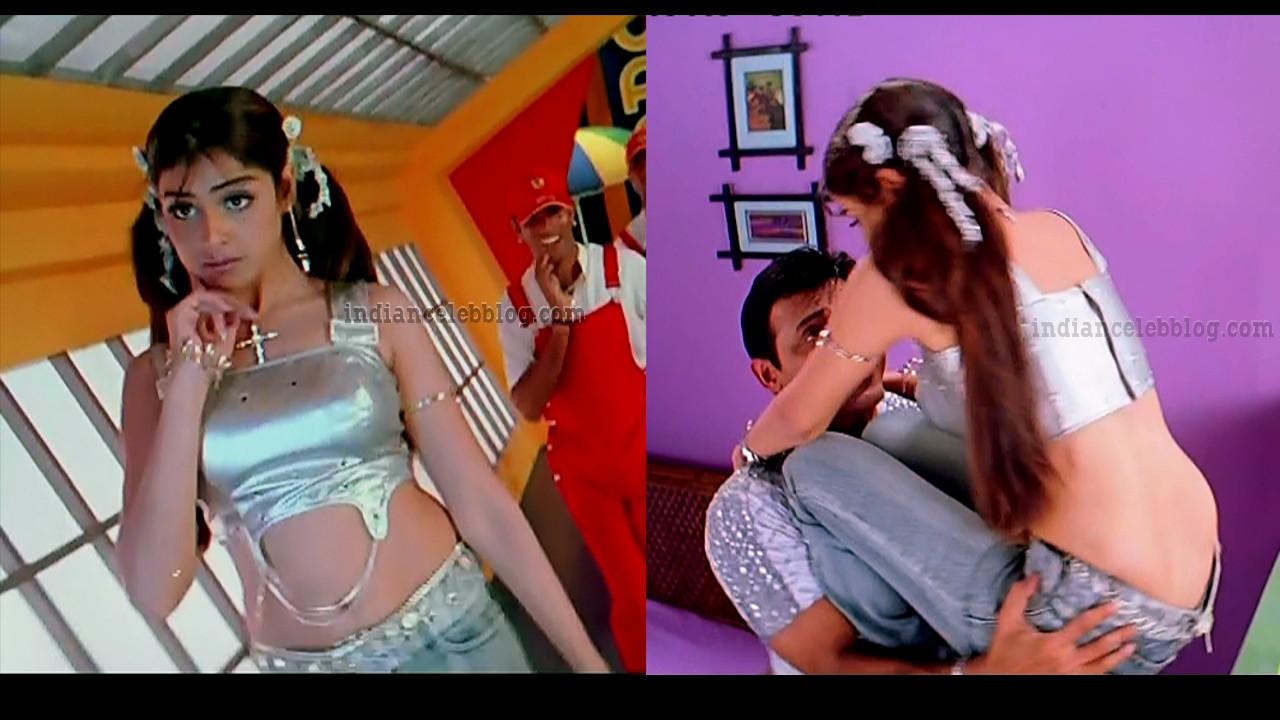Genelia D'Souza sexy navel telugu movie subash chandra bose caps