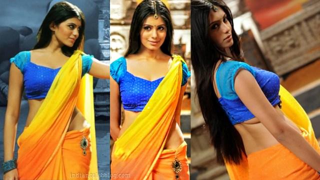 Deepa sannidhi kannada actress MSS1 5 hot sari pic