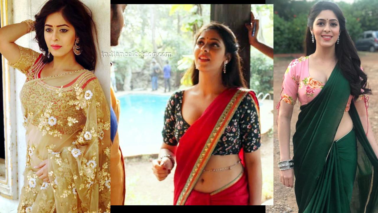 Garima jain hindi tv actress hot pics in sari