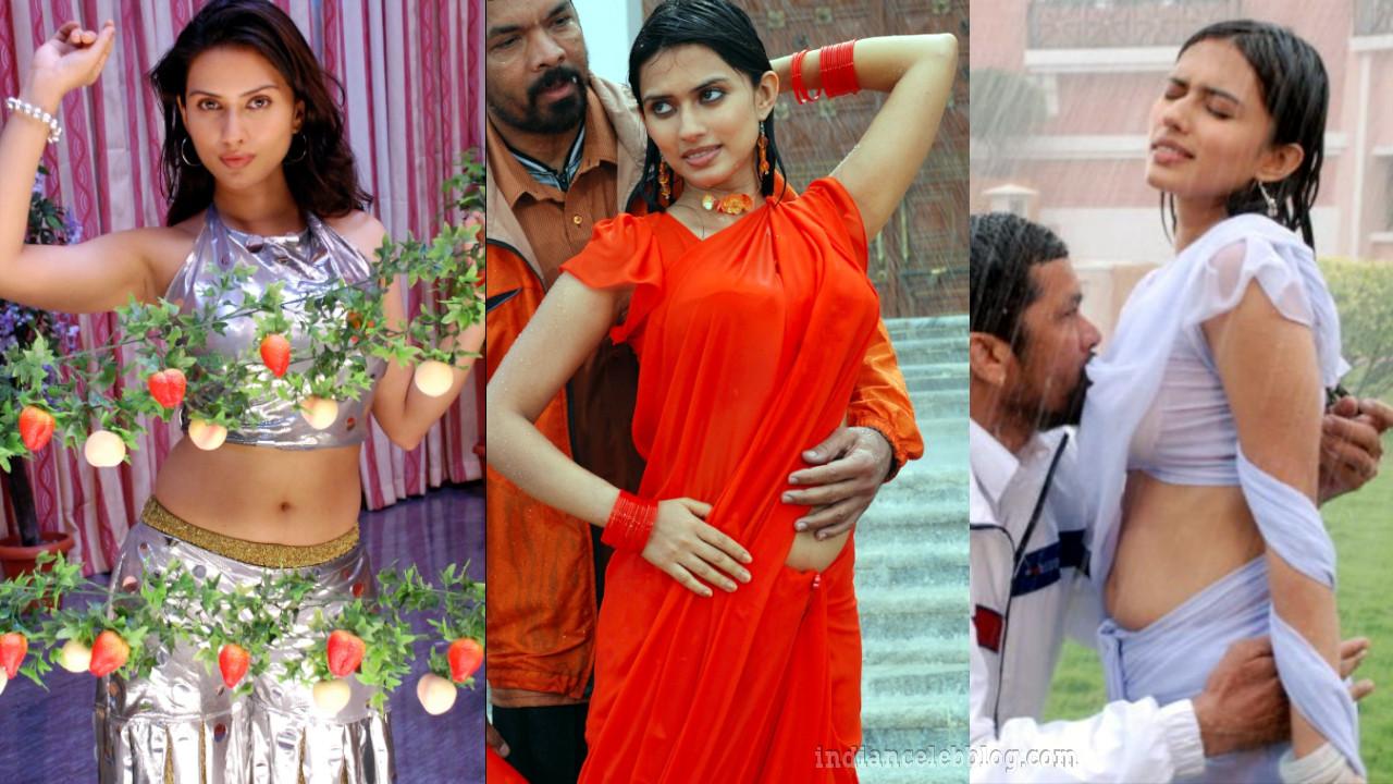 Gowri panit telugu actress hot saree stills
