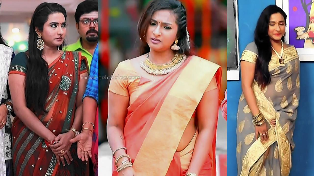 Ramya shankar saree caps tamil tv serial roja