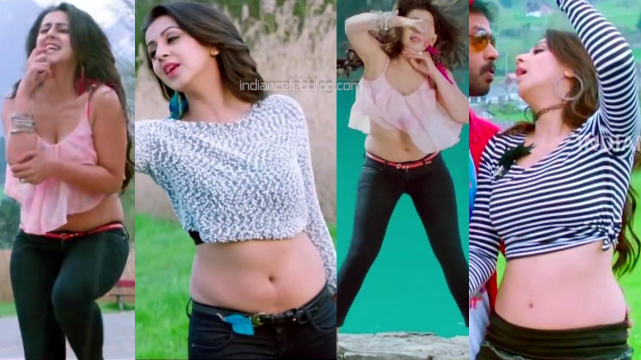 Nikki galrani tamil actress sexy navel midriff show hot pics