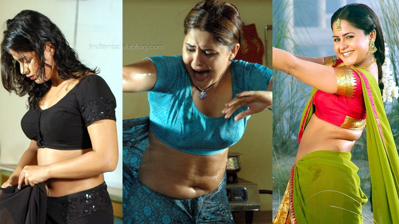Farzana telugu actress hot saree navel stills photo gallery