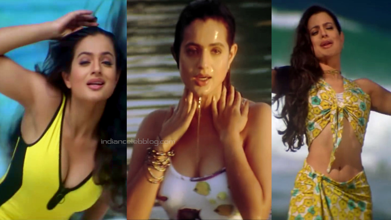 Ameesha patel bollywood sexy swimsuit cleavage pics hd captures