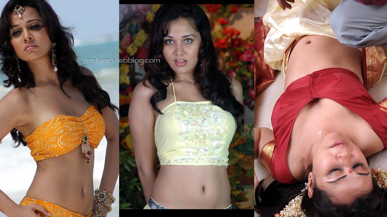 Priyanka kothari bollywood actress hot stills photo gallery