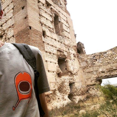 Castillo robado