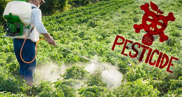 High-Pesticide Fruits and Vegetables Correlated With Lower Fertility Rates, Says Study