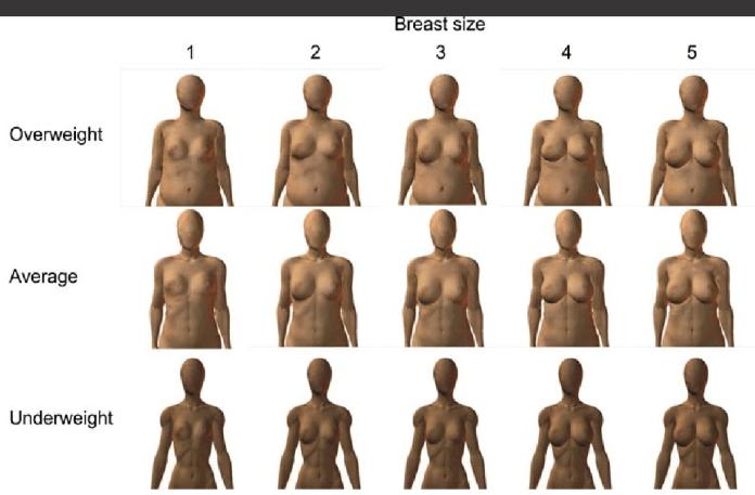 breast size