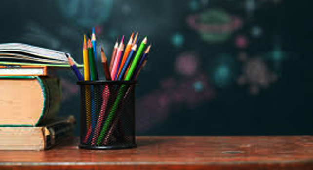 How The Primary Teachers Flare in Grammar