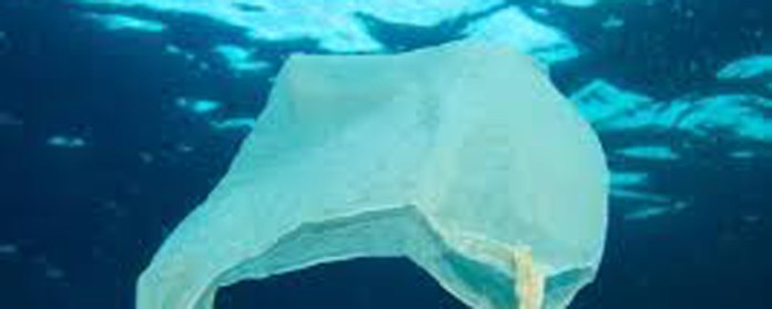 Plastic Leakage Into Water Bodies to Double by 2030