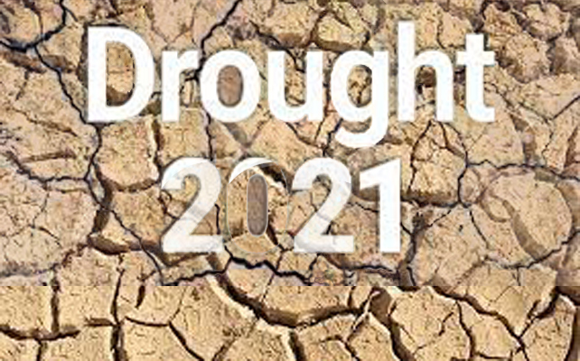 Act Now or Suffer More Drought In coming Days; UNDRR