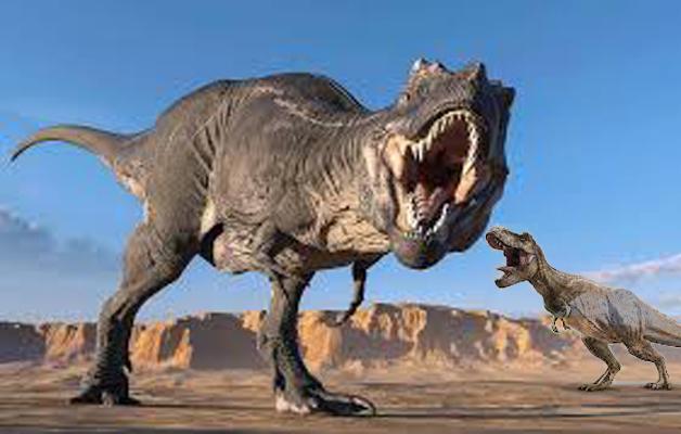 T Rex Used Sensors to detect preys