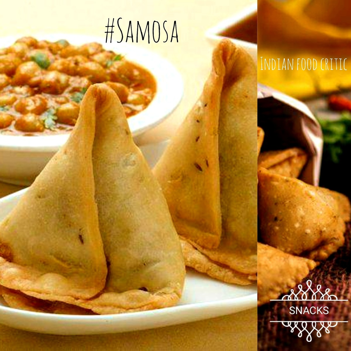 15 Samosa Varieties| Samosa Fest | 15 Samosa Recipes including some not-so-familiars! | 4.7/5.0