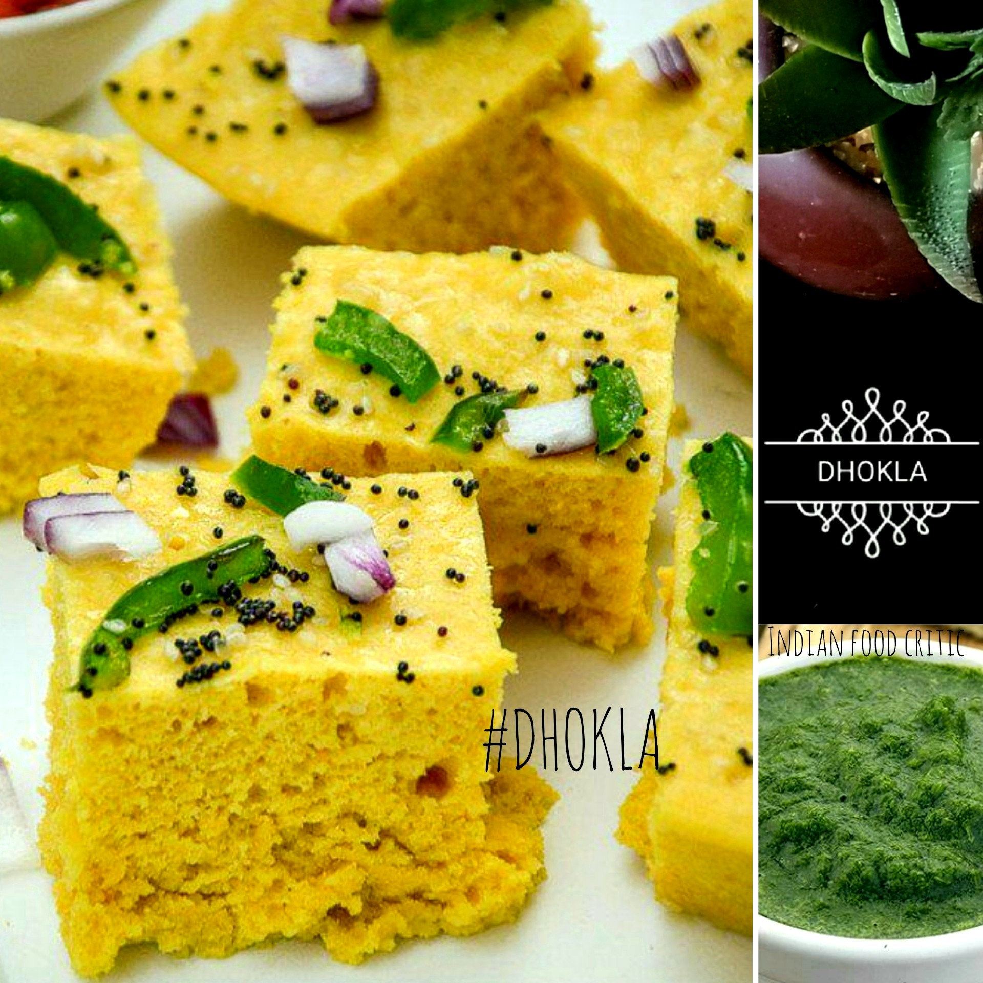 17 dhokla varieties khaman dhokla and many more 47550 17 dhokla varieties khaman dhokla and many more 47550 indian food critic forumfinder Gallery