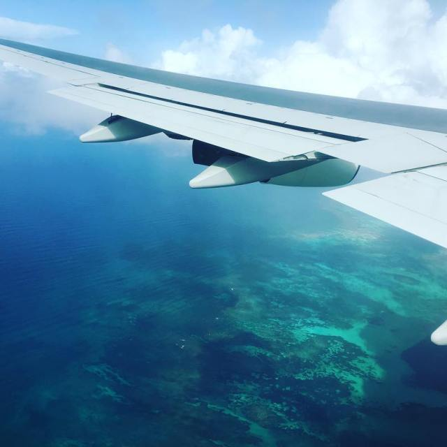 Welcome to the caribbean islands Wait for me sparrow! travelhellip