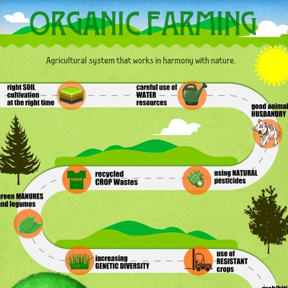 "organic farming in india Welcome to inacres "" making your organic farm dream come true  community based organic farming  info@inacrescom inacres india llp plot no86,."