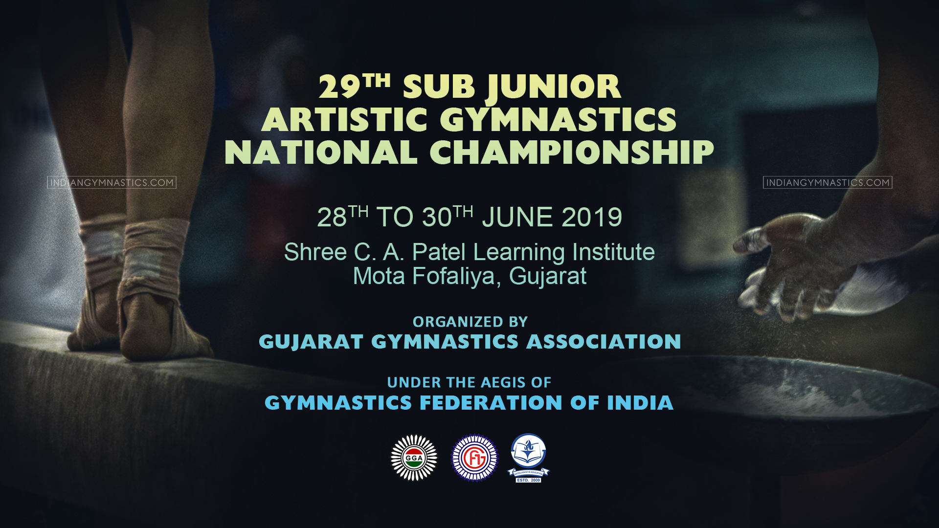 29th Sub Junior Artistic Gymnastics National Championship